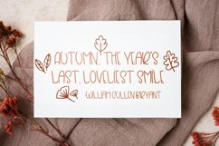 Beaver Moon Handwritten Fall Font With Doodles Product Image 6