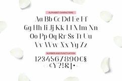 Tavania Font Product Image 2