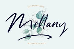 Mellany Modern Script Font Product Image 1