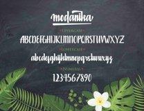 Modanika Product Image 5