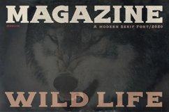 Alpha wolf - Serif font Product Image 4