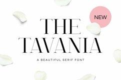 Web Font Tavania Font Product Image 1