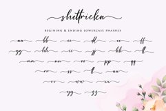 Shettricka - Modern Calligraphy Product Image 5