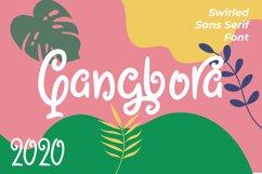 Qangbora - Swirled Fancy Fonts Product Image 1