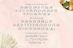 Cleona Font Product Image 5