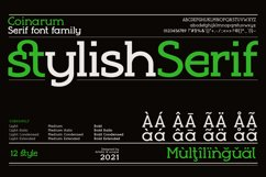Coinarum - Serif font family Product Image 2