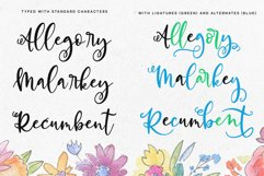 Allegory - a fun and curly script font! Product Image 6