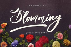 Blomming - Brush Font Product Image 1