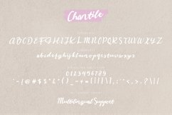 Chantile Product Image 6