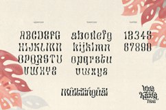 Viva Kaiva - Unique Psychedelic Font Product Image 3