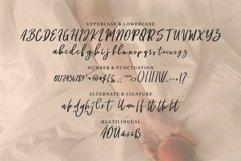 Web Font Charity - A Beauty Script Font Product Image 3