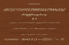 Chillybeans Script Font Product Image 5