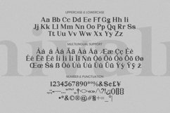 Web Font Chivalry Font Product Image 4