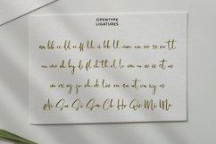 Cholasette Script Font Product Image 5