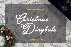 Web Font Christmas - Dingbats Font Product Image 1