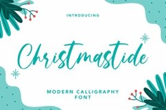 Web Font Christmastide - Modern Calligraphy Font Product Image 1