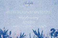 Chuckybits Fancy Signature Script Font Product Image 4