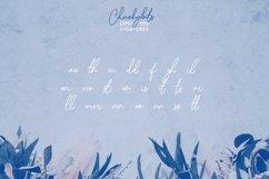Chuckybits Fancy Signature Script Font Product Image 3