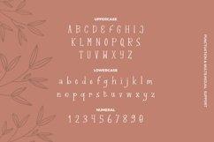 Web Font Claretta Font Product Image 3