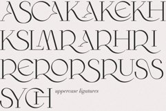 Wilde Rosa // Display Font Product Image 6