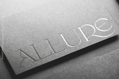 Wilde Rosa // Display Font Product Image 2