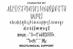 Web Font Continue - Monoline Script Font Product Image 3