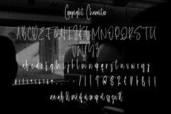 Web Font Copyright - Monoline Signature Font Product Image 4