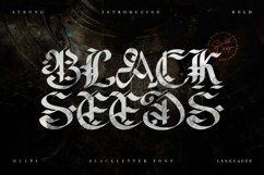 Blackseeds - Blackletter Font Product Image 1