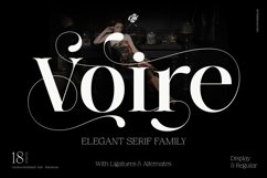 Voire - Beauty Elegant Serif family Product Image 1