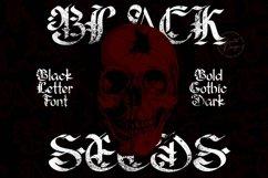 Blackseeds - Blackletter Font Product Image 4