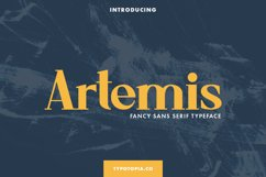 Artemis Fancy Sans Serif Typeface Product Image 1