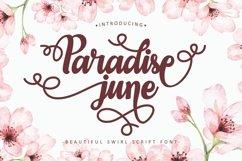 Paradise June - Beautiful Swirl Script Font Product Image 1