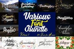 Script FontBundle Volume 1 Product Image 1