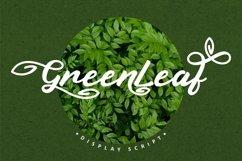 Green Leaf - Display Script Font Product Image 1