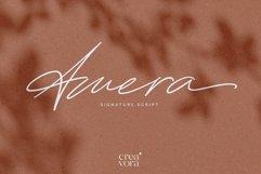 Amera - Special Signature Script Product Image 1