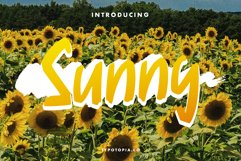 Sunny Display Font Product Image 1