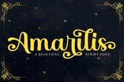 Amarilis Product Image 1
