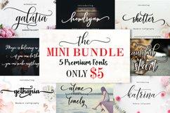 Mini Bundle 5 font only $5 Product Image 1