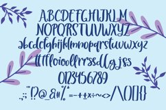 Cresselia - Fancy Handrawn Font Product Image 5