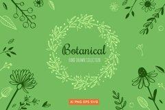 Floral botanical doodle illustrations set Product Image 1