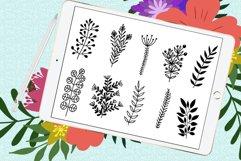 Doodle leaves procreate brushes, foliage stamps Product Image 2