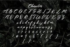 Chaeron Product Image 3
