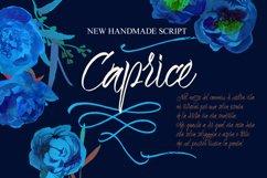 Caprice Script Product Image 1