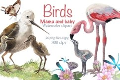 Birds mom and baby ,watercolor Clipart , nest with chicks Product Image 1