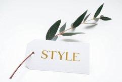 Daria Type Product Image 5