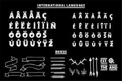 Adelard Scratches Font Product Image 5