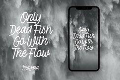 Web Font Niagara - Monoline Script Font Product Image 3