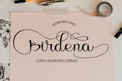 Birdena Script Product Image 1