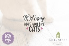 Hope You Like Cats SVG Files, Funny Front Door SVG Product Image 2