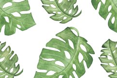 Watercolor tropical green leaves set and pattern Product Image 4